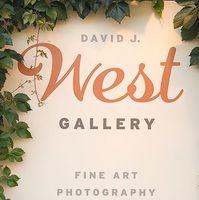 David J West Gallery logo