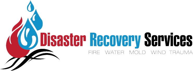 Disaster Recovery Services logo