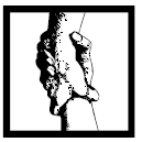 Palmer Litigation logo