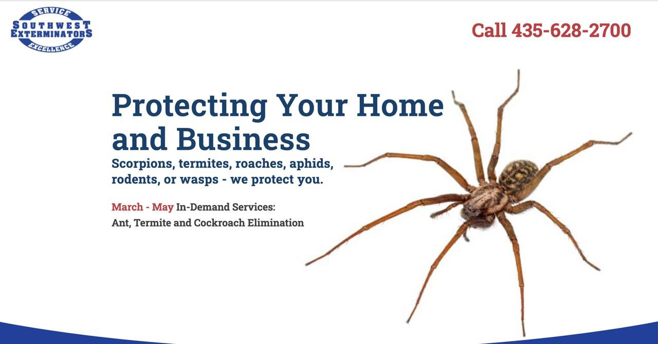 Photo uploaded by Southwest Exterminators